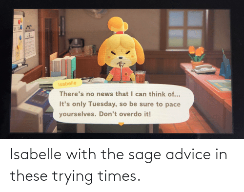 Sage: Isabelle with the sage advice in these trying times.