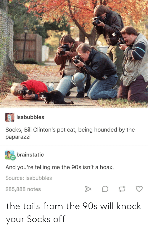 tails: isabubbles  Socks, Bill Clinton's pet cat, being hounded by the  paparazzi  brainstatic  And you're telling me the 90s isn't a hoax.  Source: isabubbles  285,888 notes the tails from the 90s will knock your Socks off
