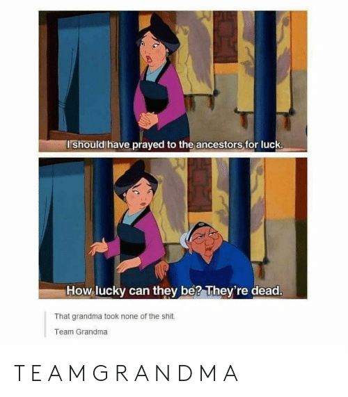 Grandma, Shit, and Luck: Ishould have prayed to the ancestors for luck.  How lucky can they be? They're dead.  That grandma took none of the shit  Team Grandma T E A M G R A N D M A