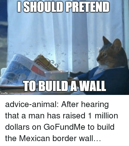 Build A Wall: ISHOULD PRETEND  TO BUILD A WALL  imgflip.com advice-animal:  After hearing that a man has raised 1 million dollars on GoFundMe to build the Mexican border wall…