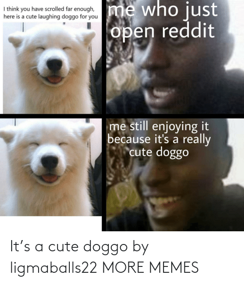 A Cute: It's a cute doggo by ligmaballs22 MORE MEMES