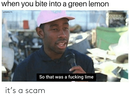 scam: it's a scam
