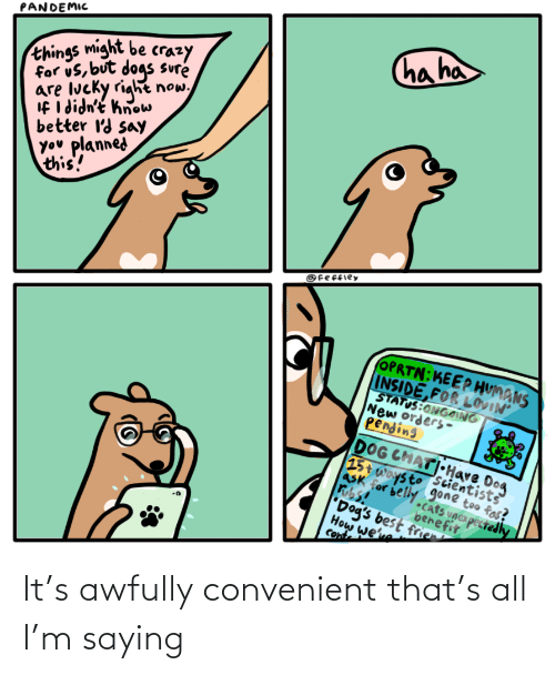 convenient: It's awfully convenient that's all I'm saying
