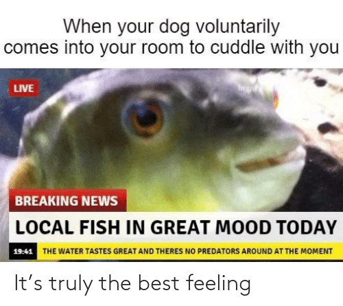 Truly: It's truly the best feeling