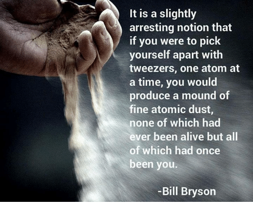 Alive, Memes, and Time: It is a slightly  arresting notion that  if you were to pick  yourself apart with  tweezers, one atom at  a time, you would  produce a mound of  fine atomic dust,  none of which had  ever been alive but all  of which had once  been you  Bill Bryson