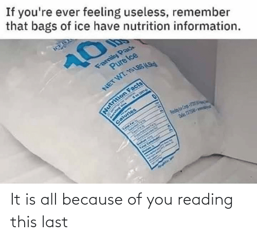 Because of You: It is all because of you reading this last