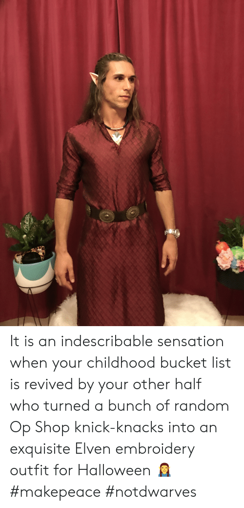Bucket List, Halloween, and Random: It is an indescribable sensation when your childhood bucket list is revived by your other half who turned a bunch of random Op Shop knick-knacks into an exquisite Elven embroidery outfit for Halloween 🧝♂️ #makepeace #notdwarves