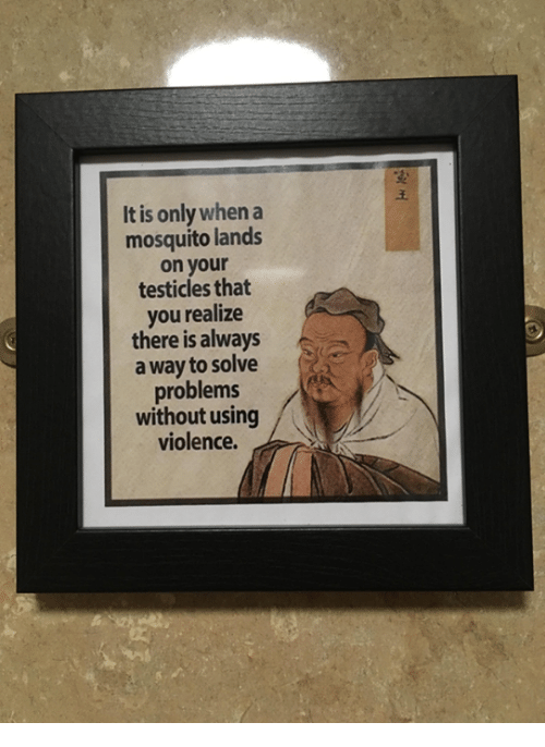 Dank, 🤖, and Mosquito: It is only when a  mosquito lands  on your  testicles that  you realize  there is always  a way to solve  problems  without using  violence.