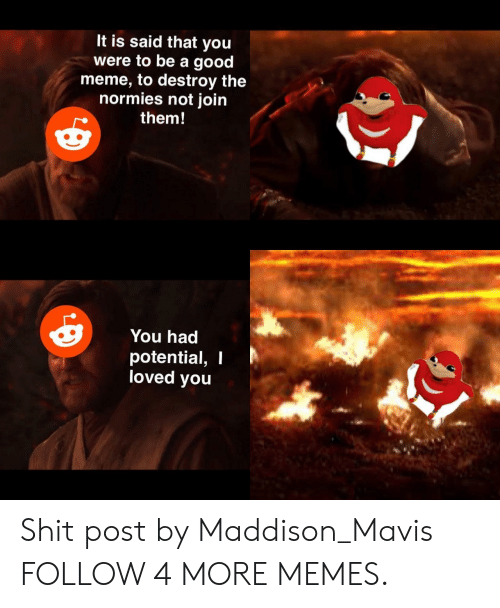 Shit Post: It is said that you  were to be a good  meme, to destroy the  normies not join  them!  You had  potential, I  loved you Shit post by Maddison_Mavis FOLLOW 4 MORE MEMES.