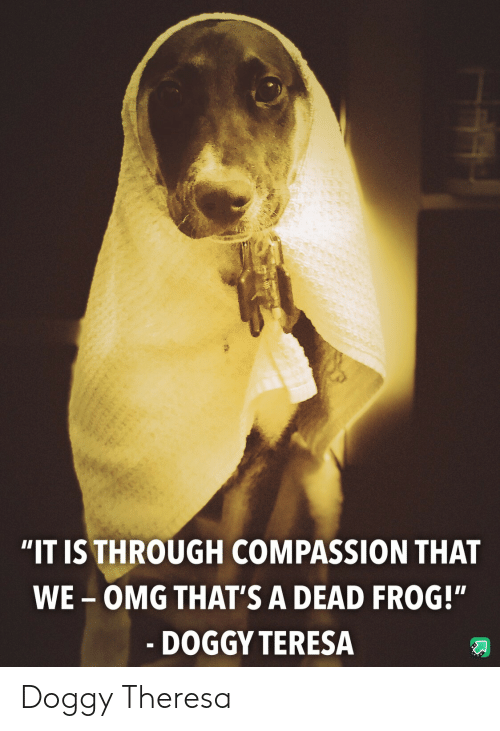 "Omg, Compassion, and Frog: ""IT IS THROUGH COMPASSION THAT  WE-OMG THAT'S A DEAD FROG!""  - DOGGY TERESA Doggy Theresa"