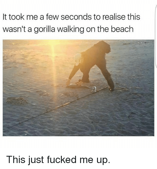 Gorilla Walking: It took me a few seconds to realise this  wasn't a gorilla walking on the beach This just fucked me up.