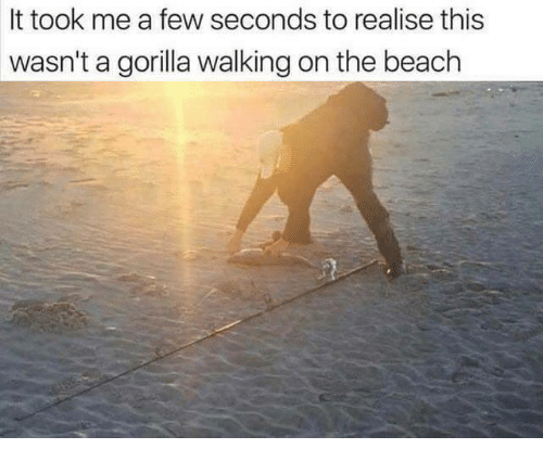 Gorilla Walking: It took me a few seconds to realise this  wasn't a gorilla walking on the beach