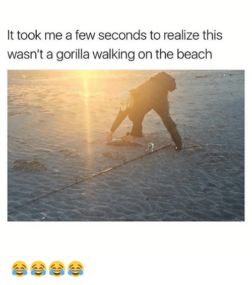 Gorilla Walking: It took me a few seconds to realize this  wasn't a gorilla walking on the beach 😂😂😂😂