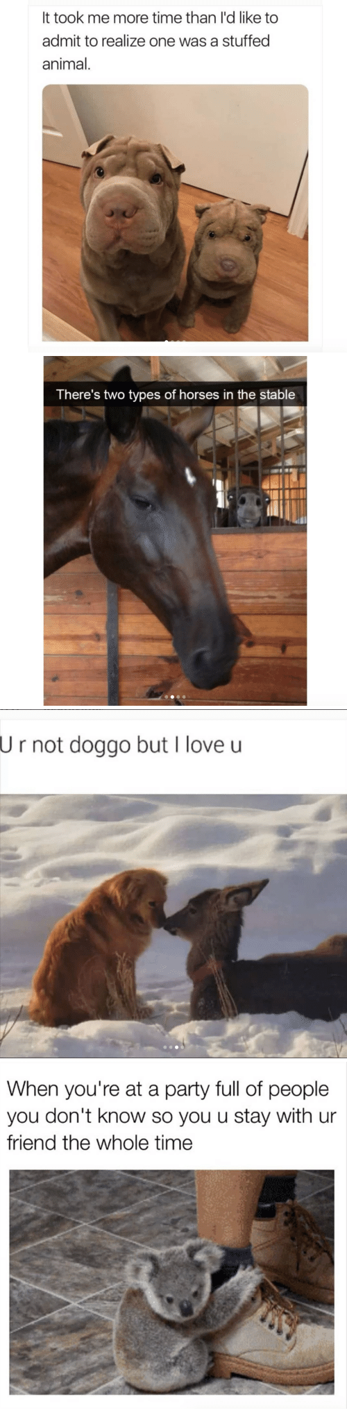 When Youre At A Party: It took me more time than l'd like to  admit to realize one was a stuffed  animal.   There's two types of horses in the stable   U  r not doggo but I love u   When you're at a party full of people  you don't know so you u stay with ur  friend the whole time