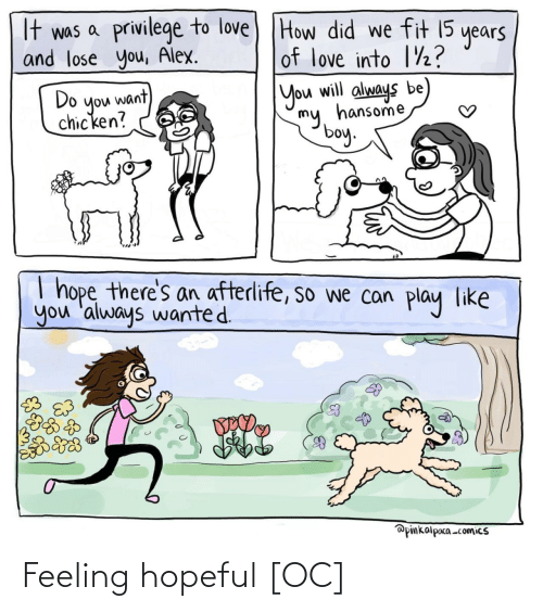 I Hope: It was a privilege to love) THow did we fit 15  and lose you, Alex.  years  of love into 1½?  Do  you want  chicken?  You will always be  my, hansome  boy.  I hope there's an afterlife, so we can  you 'always wanted.  play  like  @pinkalpaca -comics Feeling hopeful [OC]