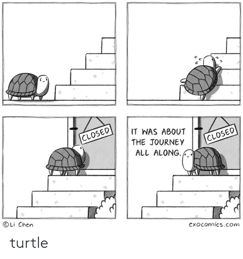 Journey, Turtle, and Com: IT WAS ABOUT  CLOSED  THE JOURNEY  CLOSED  ALL ALONG  Li Chen  Cxocomics.com turtle