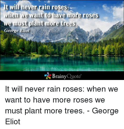 Eliot: It wil never rain roses:  when we want to have more roses  e must plant more trees.  George Eliot  Brainy  Quote It will never rain roses: when we want to have more roses we must plant more trees. - George Eliot