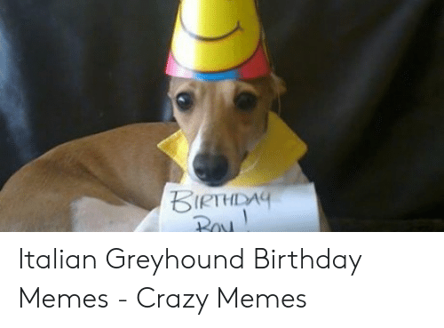 Birthday And Birthday Meme On Awwmemescom