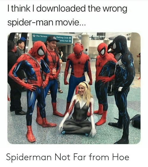Hoe, Spider, and SpiderMan: Ithink I downloaded the wrong  spider-man movie...  The Terrace  Parking C&D  entia Hall Spiderman Not Far from Hoe