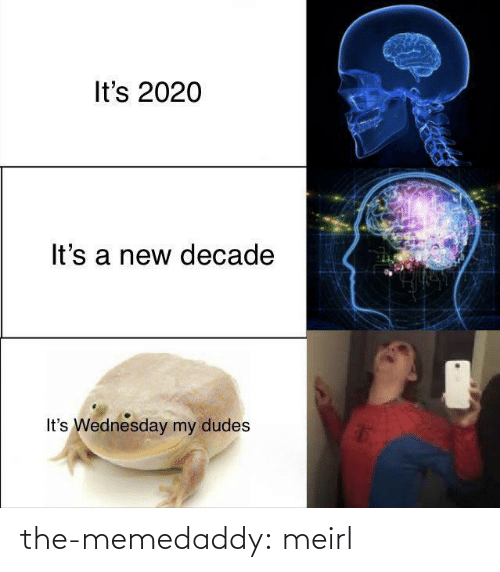 Wednesday: It's 2020  It's a new decade  It's Wednesday my dudes the-memedaddy:  meirl