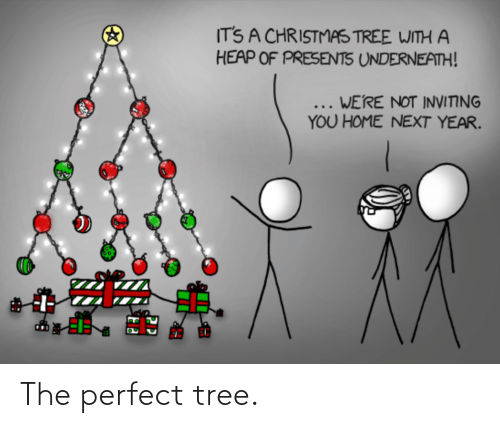Christmas Tree: IT'S A CHRISTMAS TREE WITH A  HEAP OF PRESENTS UNDERNEATH!  ... WE'RE NOT INVITING  YOU HOME NEXT YEAR. The perfect tree.