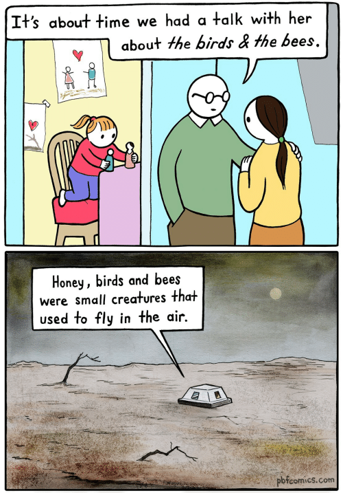 creatures: It's about time we had a talk with her  about the birds & the bees.  Honey, birds and bees  were small creatures that  used to fly in the air.  pbfcomics.com