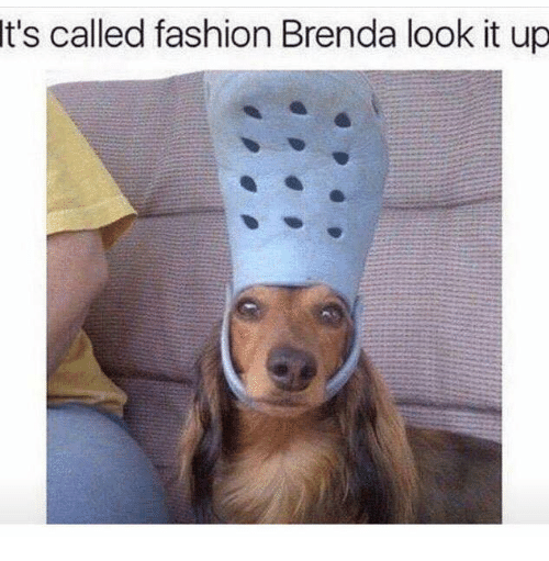 Its Called Fashion: It's called fashion Brenda look it up