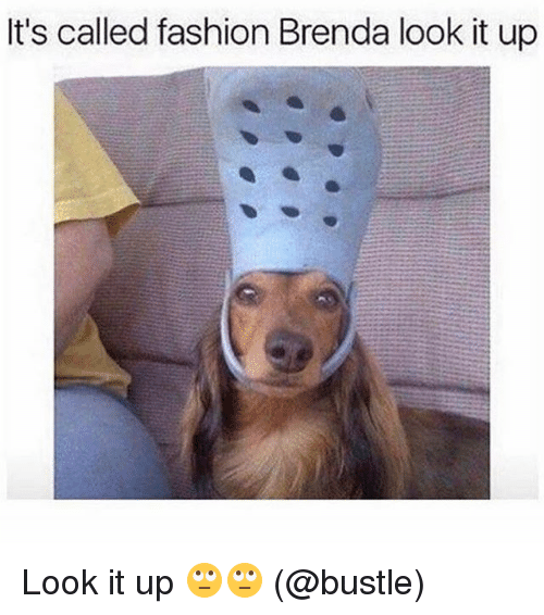 Its Called Fashion: It's called fashion Brenda look it up Look it up 🙄🙄 (@bustle)