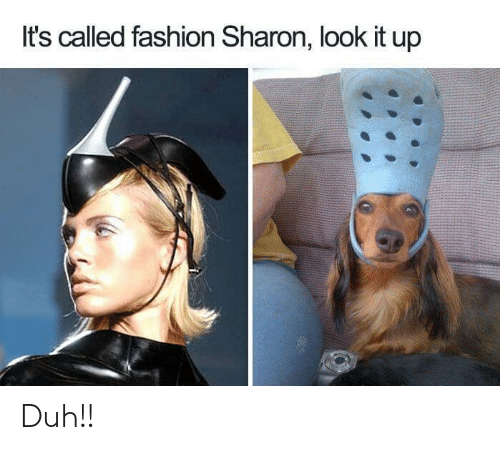 Its Called Fashion: It's called fashion Sharon, look it up Duh!!