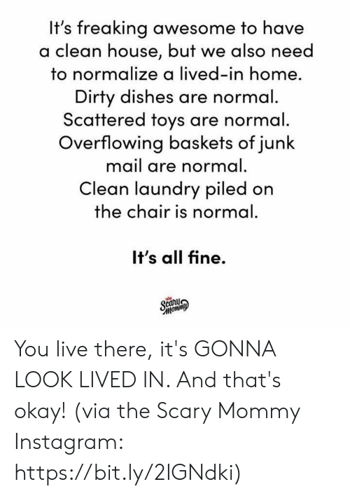 Dank, Instagram, and Laundry: It's freaking awesome to have  lean house, but we also need  to normalize a lived-in home  Dirty dishes are normal  Scattered toys are normal  Overflowing baskets of junk  mail are normal.  Clean laundry piled on  the chair is normal  It's all fine.  car You live there, it's GONNA LOOK LIVED IN. And that's okay!  (via the Scary Mommy Instagram: https://bit.ly/2IGNdki)