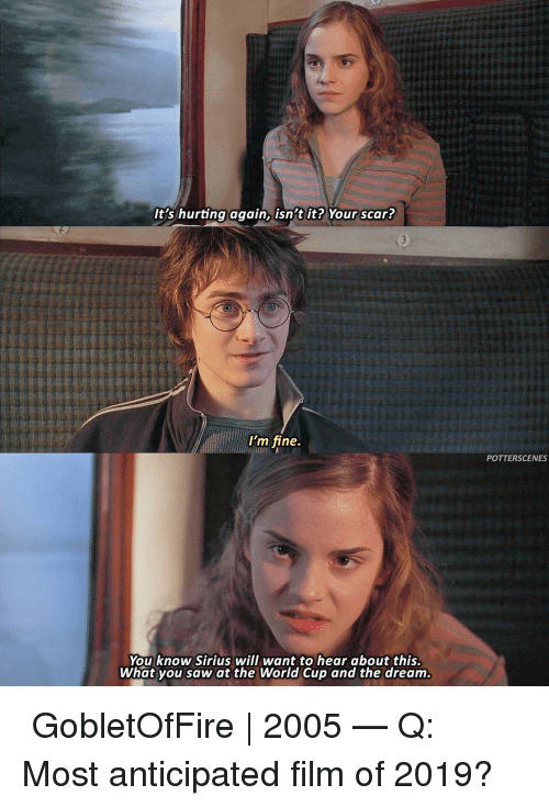 Memes, Saw, and World Cup: It's hurting again, isn't it? Your scar?  I'm fine.  POTTERSCENES  You know Sirius will want to hear about this.  What you saw at the World Cup and the dream ➙ GobletOfFire | 2005 — Q: Most anticipated film of 2019?