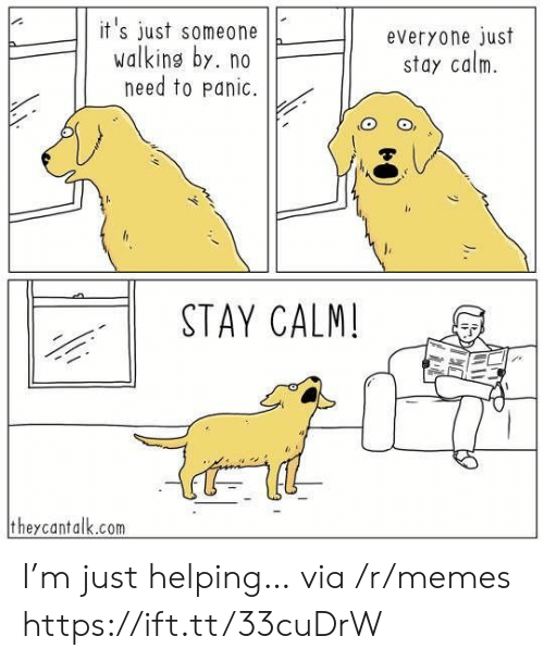 M Just: it's just someone  walking by. no  need to panic.  everyone just  stay calm  STAY CALM!  theycantalk.com I'm just helping… via /r/memes https://ift.tt/33cuDrW