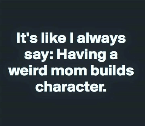 Dank, Weird, and Mom: It's like I always  say: Having a  weird mom builds  character