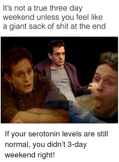 Memes, Shit, and True: It's not a true three day  weekend unless you feel like  a giant sack of shit at the end If your serotonin levels are still normal, you didn't 3-day weekend right!