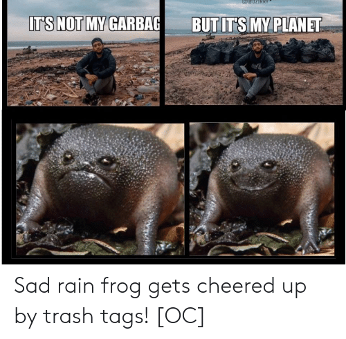 Not My: IT'S NOT MY GARBAG  BUT IT'S MY PLANET Sad rain frog gets cheered up by trash tags! [OC]