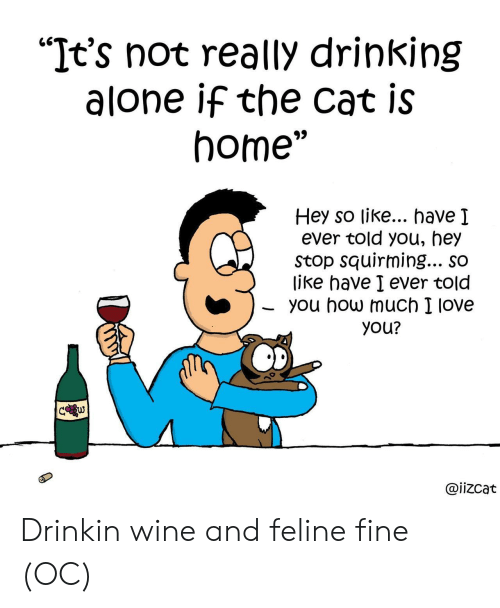 "Being Alone, Drinking, and Love: ""It's not really drinking  alone if the cat is  home""  Hey so like... have I  ever told you, hey  Stop squirming... so  like have I ever told  you how much I love  you?  C w  @iizcat Drinkin wine and feline fine (OC)"