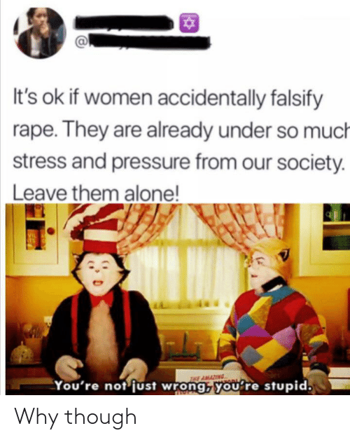 Pressure: It's ok if women accidentally falsify  rape. They are already under so much  stress and pressure from our society.  Leave them alone!  VIL  THE AMAZING  You're not just wrong, you're stupid. Why though