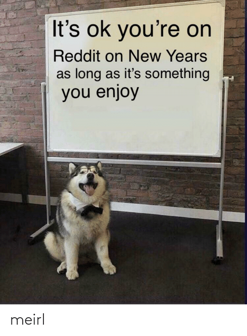 Reddit, MeIRL, and New: It's ok you're on  Reddit on New Years  as long as it's something  you enjoy meirl