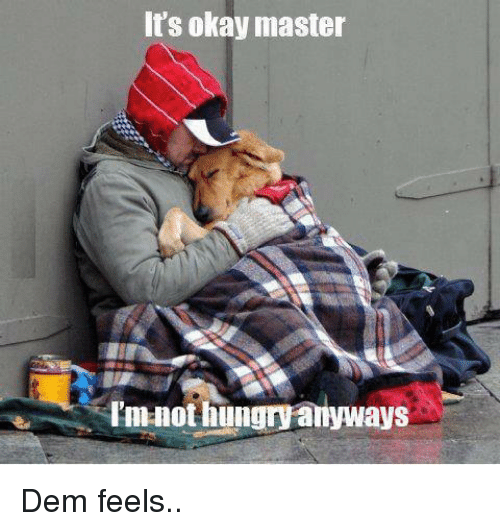 Dem Feels: It's okay master  not hungry anyways Dem feels..
