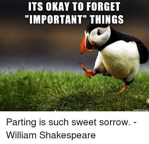 Parting: ITS OKAY TO FORGET  on imgur Parting is such sweet sorrow. -William Shakespeare
