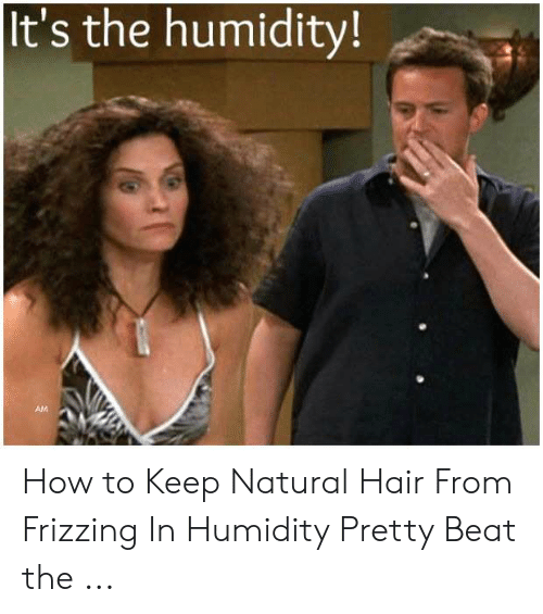 It S The Humidity Am How To Keep Natural Hair From Frizzing