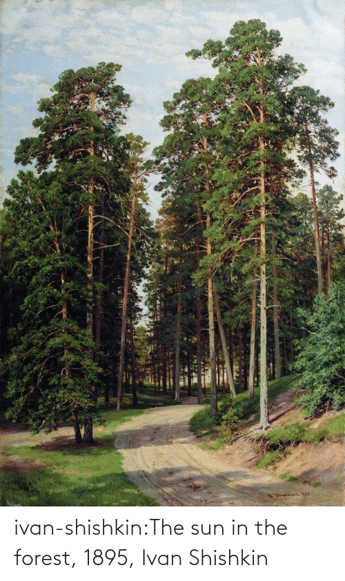 sun: ivan-shishkin:The sun in the forest, 1895, Ivan Shishkin