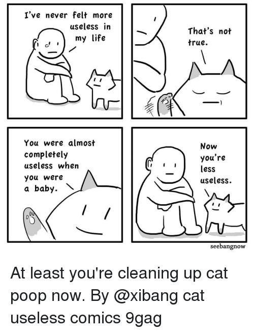 9gag, Life, and Memes: I've never felt more  useless in  That's not  true.  my life  You were almost  completely  useless when  you were  a baby.  Now  you're  less  useless.  seebangnow At least you're cleaning up cat poop now. By @xibang cat useless comics 9gag