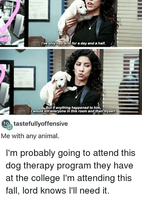 College, Fall, and Memes: I've only hadArisfor a day and a half.  But if anything happened to hlm,  I would kill everyone in this room and then myself.  Oto tastefullyoffensive  Me with any animal. I'm probably going to attend this dog therapy program they have at the college I'm attending this fall, lord knows I'll need it.