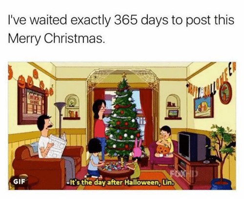 Christmas, Funny, and Gif: I've waited exactly 365 days to post this  Merry Christmas.  GIF  It's the day after Halloween, Lin.