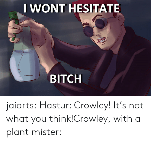 Bitch, Target, and Tumblr: IWONT HESITATE  BITCH jaiarts:  Hastur: Crowley! It's not what you think!Crowley, with a plant mister: