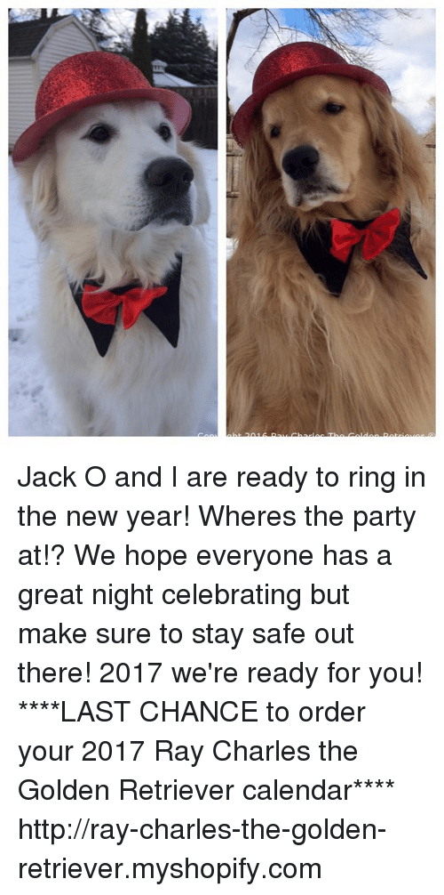 Stay Safe Out There: Jack O and I are ready to ring in the new year! Wheres the party at!? We hope everyone has a great night celebrating but make sure to stay safe out there! 2017 we're ready for you!  ****LAST CHANCE to order your 2017 Ray Charles the Golden Retriever calendar**** http://ray-charles-the-golden-retriever.myshopify.com