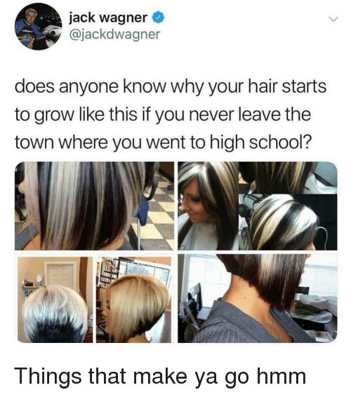 School, Hair, and Girl Memes: jack wagner  @jackdwagner  does anyone know why your hair starts  to grow like this if you never leave the  town where you went to high school?  nIIB Things that make ya go hmm