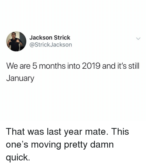 Funny, One, and Jackson: Jackson Strick  @StrickJackson  We are 5 months into 2019 and it's still  January That was last year mate. This one's moving pretty damn quick.