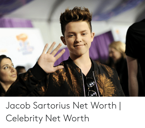 Jacob Sartorius Net Worth | Celebrity Net Worth | Jacob